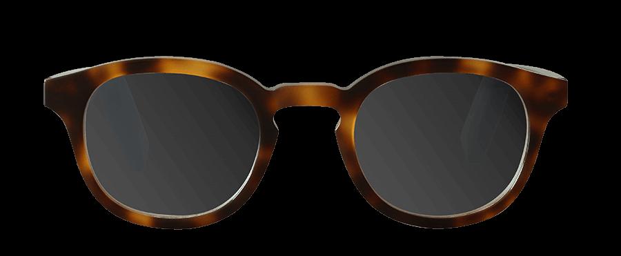 Brown sončna / IG002